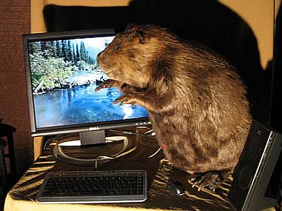 パソコンの無骨なケースが好きではない人や、人が来たときにパソコン本体の... インテリアに巧妙に