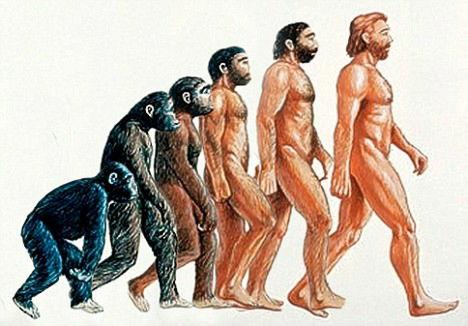 https://i.gzn.jp/img/2008/10/08/evolution_stops_here/article-0-02EC002200000578-483_468x326.jpg