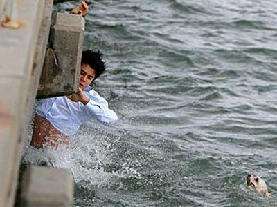 強風で桟橋から海に落ちた犬を見た男性、颯爽と海に飛び込み犬を救出