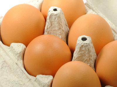 パックに入っている卵