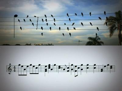 青空のラプソデ 谱子-ブラジル人のミュージシャン   フォトレタッチによく使われる