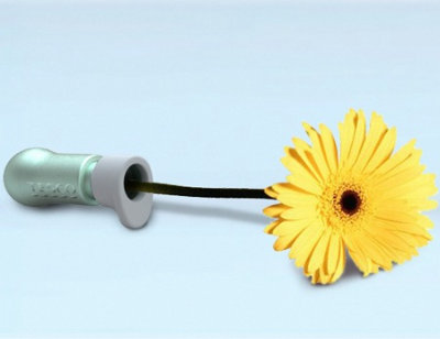 how to keep cut flowers fresh without water