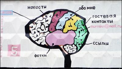 脳に関するさまざまな迷信を打ち砕く7つの真実