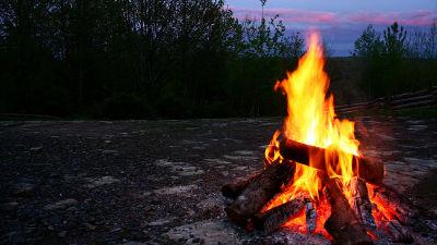 「物語」はたき火によって生まれたことが明らかに