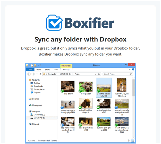how to create download link in dropbox