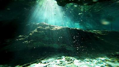 透明度100mの聖なる泉「セノーテ」をGoProで撮るとこうなる