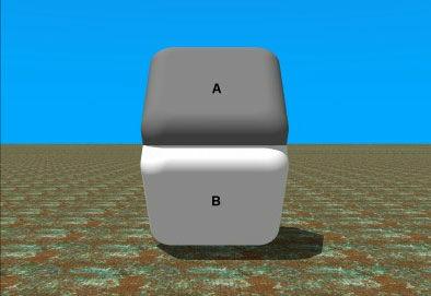 ◇04:同一色のチェス明らかに白と黒に異なって見えるチェスの駒。上下同じ色かどうかは五円玉の穴から2つの駒の色だけを見ると確かめられるハズ。