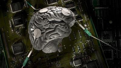 人間は左右の脳の連絡をコントロールして「マルチタスク脳」を実現している可能性が判明