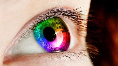 ヒトの眼球を生体認識に使う「虹...