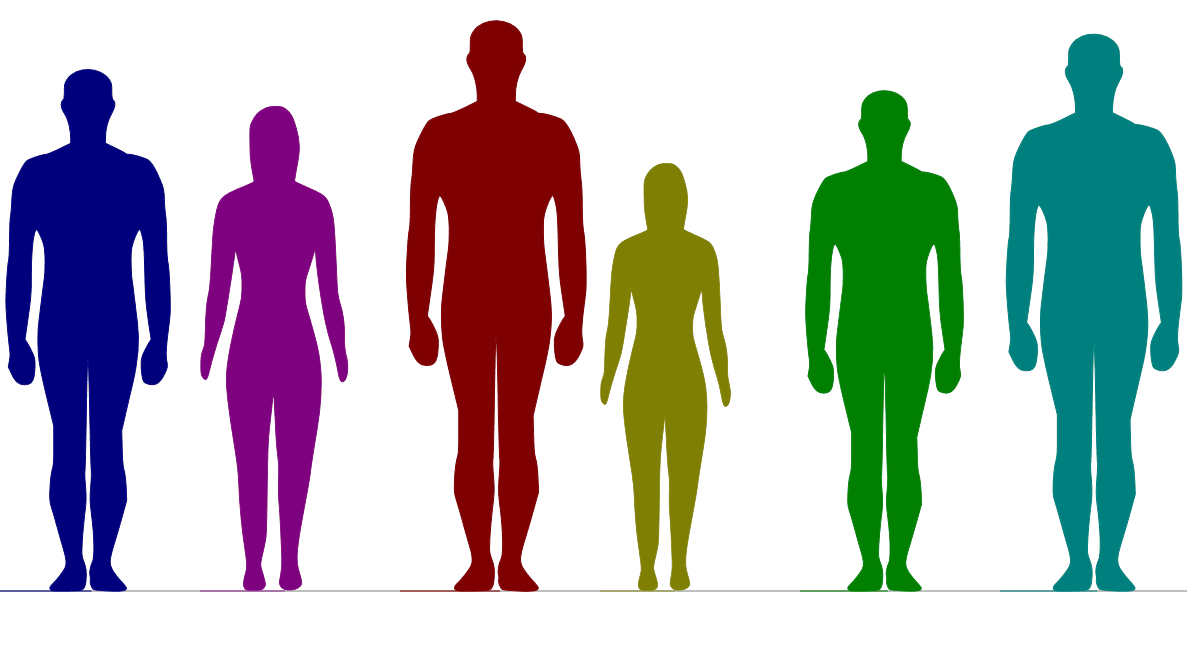 身長と性別を入力すると複数の人の体型の差を並べて表示してくれる