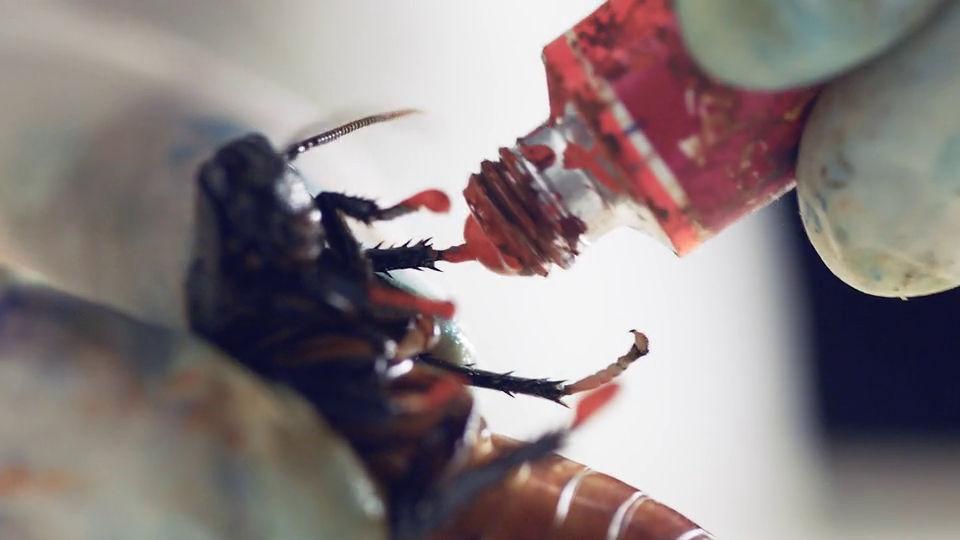 映画「スパイダーマン」でクモに演技指導した、昆虫の動きを操ることができる「虫使いアーティスト」の作品