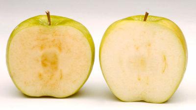 00 m - 【ゲノム編集】時間がたっても茶色くならないリンゴが「遺伝子組み換え」表記なしで販売されている