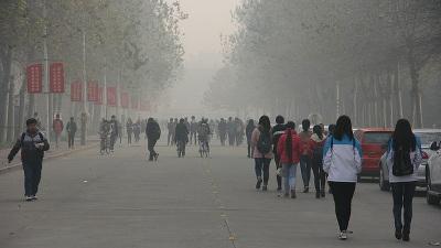 世界人口の95%は汚れた空気を吸って生きている