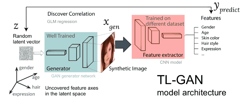 TL-GAN' that can generate realistic face photographs by naturally