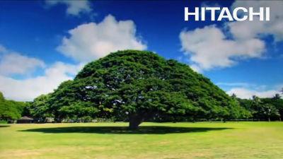 日立はTVCM「この木なんの木」の...