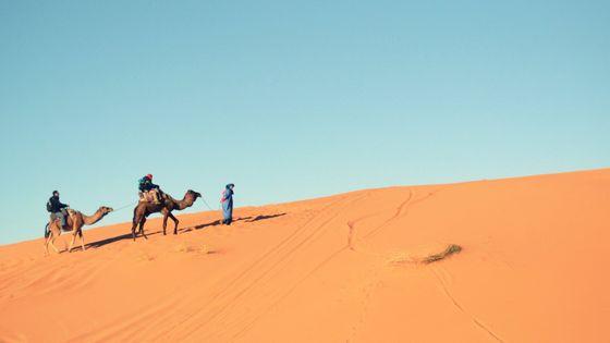 世界最大の砂漠である「サハラ砂漠」はかつて緑にあふれていた