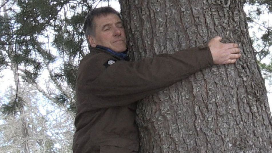 """Photo of Forest management bureau recommends """"hugging trees"""" in situations where you can not hug with people due to the new coronavirus epidemic"""