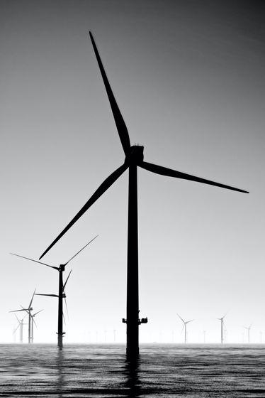 【研究】 風力発電機のタービンに「色を塗る」だけで鳥の事故死率が70%下がる 2020/08/26  [朝一から閉店までφ★]YouTube動画>2本 ->画像>9枚