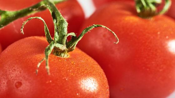 は のか イチゴ 野菜 な